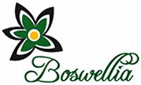 Salon Boswellia - kosmetika a masáže Praha 5